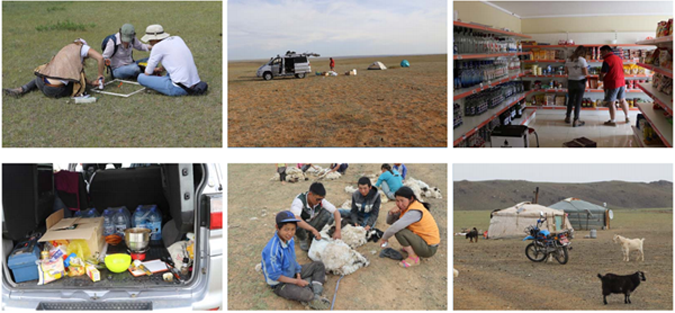 Images of the Fieldwork in Mongolia
