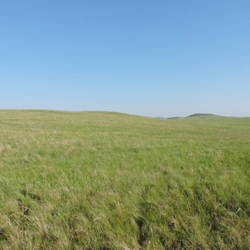 Coupled Human & Natural System on the Mongolian Plateau